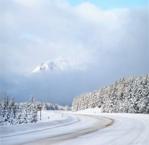 Photo shows a snowy road, with snow covered trees and a mountain in the distance.