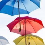 Photo shows colorful umbrellas as the banner image for the interview with IFMS president, Harinder Ahluwalia