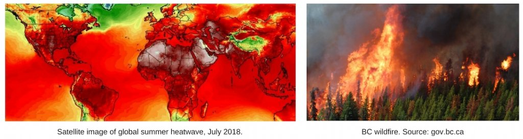 Two photos Les dix événements météorologiques les plus marquants par David Phillips. First one shows a satellite image of the earth, as a map, with temperatures displaying bright red over most of the earth. Second one shows a forest on fire.