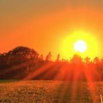 couche du soleil dans un champs